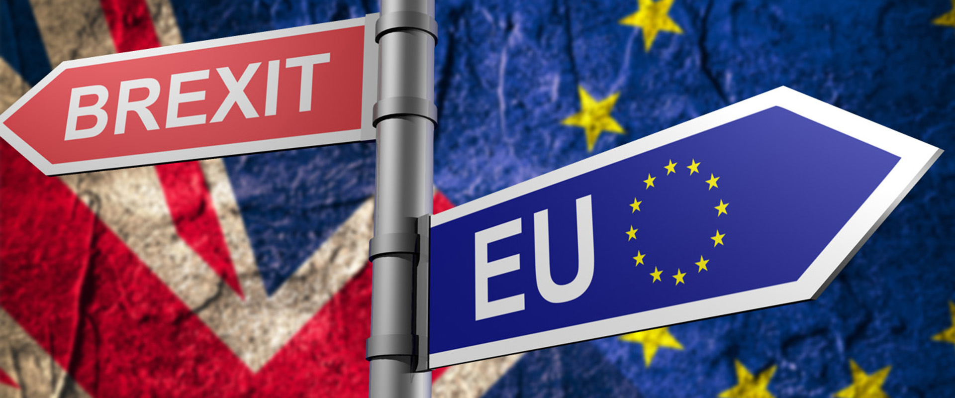 Signpost with Red Brexit sign and Blue EU sign